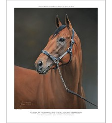 American Pharoah Official Edition Print