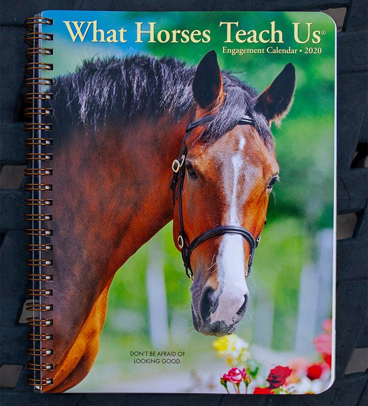 2020 What Horses Teach Us Planner,09345